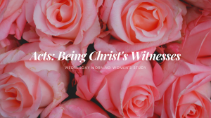 Acts: Being Christ's Witnesses - Women's Morning Study